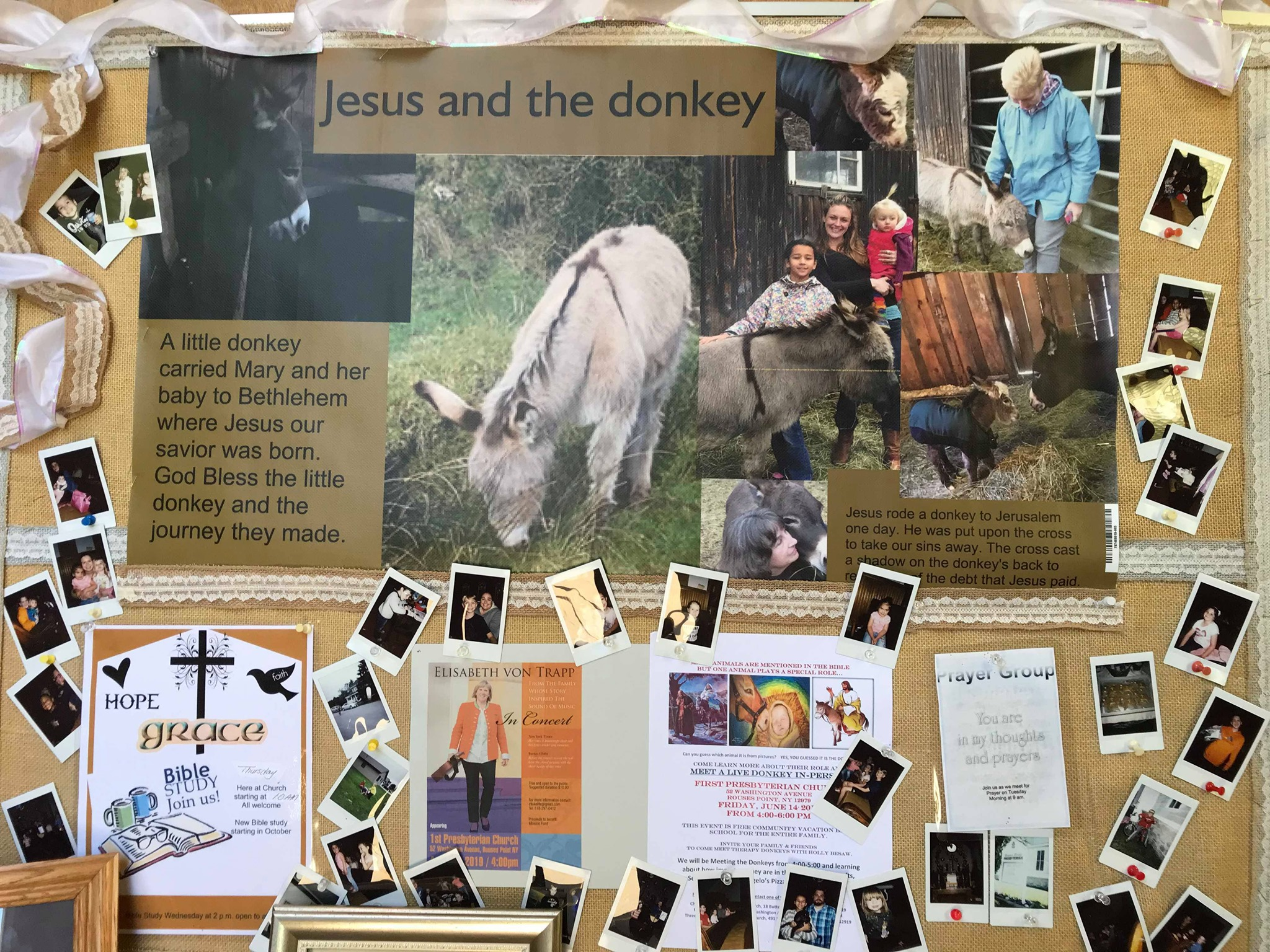Jesus and the Donkey
